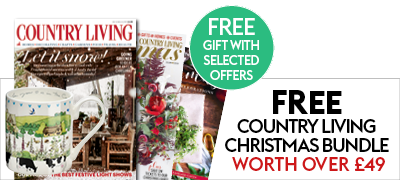 Country Living Christmas Bundle