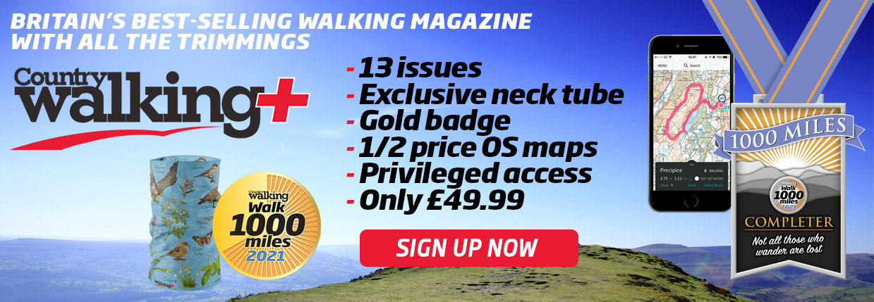 Country Walking Offer