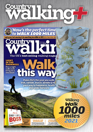 Country Walking Package